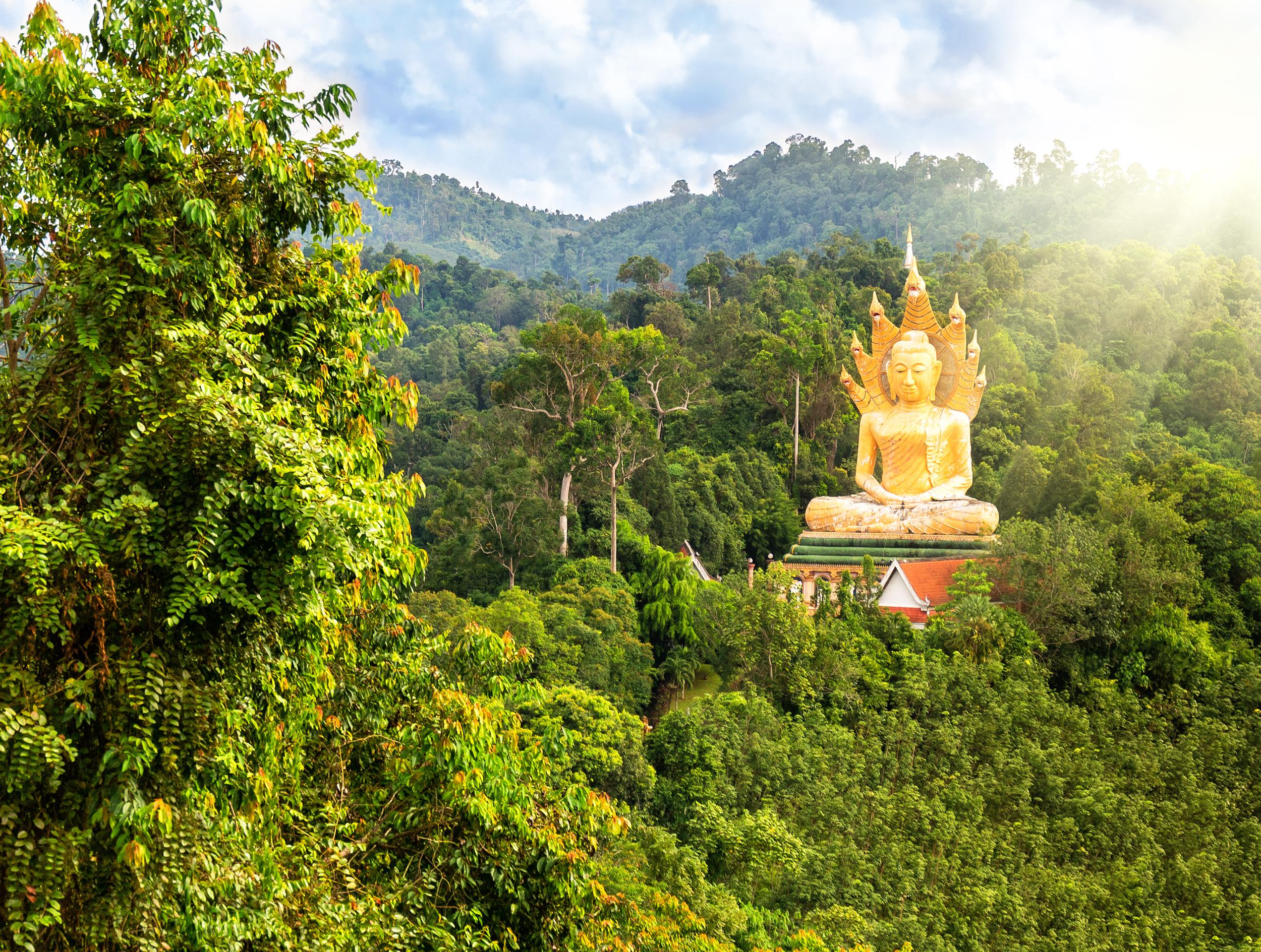 Les circuits en famille thailande : voyage réussi
