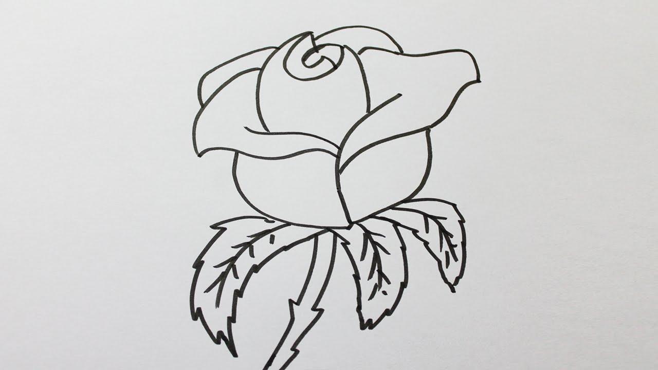 Comment dessiner des roses - Dessiner des rosaces ...